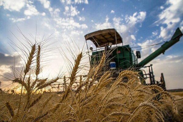 کاهش سفارش ادوات و نهادههای کشاورزی در اصفهان/ قیمت محصولات ۵ برابر شد