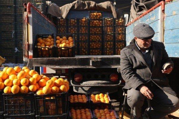 تعطیلی شبانه صنف میوهفروشهای یزد منطقی نیست