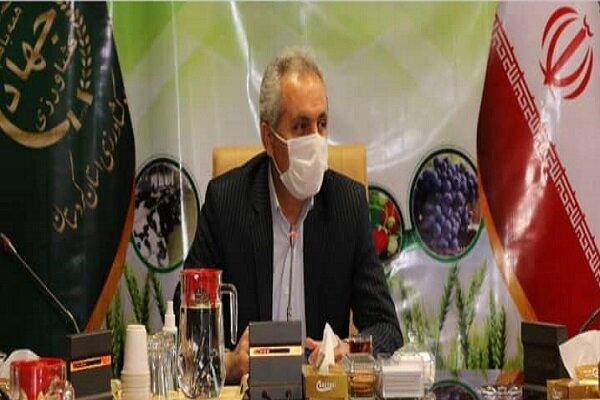 قیمت مرغ در کردستان افزایش نمی یابد/ افزایش ۱۸ درصدی جوجه ریزی