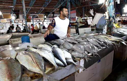 گرانی، مصرف ماهی در خانوارها را تا ۴۰ درصد کاهش داد