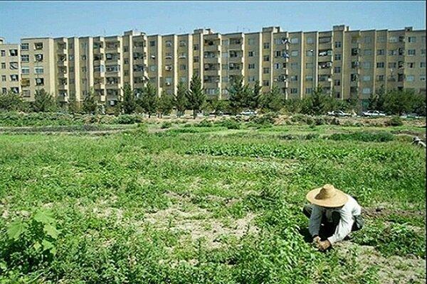 مجوز تغییر کاربری ۱۷ هکتار از اراضی کشاورزی کردستان صادر شد