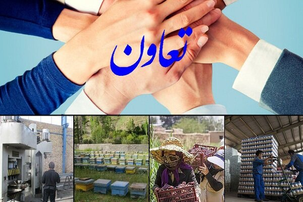 تقویت تعاونیها راهکار افزایش تولید/ فعالیت ۱۱۷۰ تعاونی در همدان