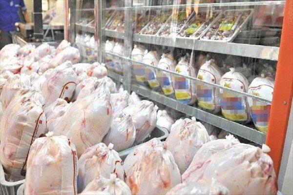 دولت نهادههای دامی را تامین نکرد مرغ ۳۶ هزار تومان شد/ گرانی به دلیل خرید خوراک مرغ با ۴ برابر قیمت