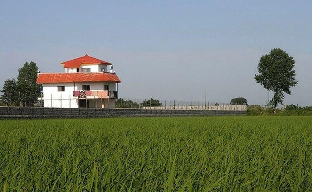 «بورس بازی» زمینه تغییر کاربری مزارع را در مازندران تقویت کرد