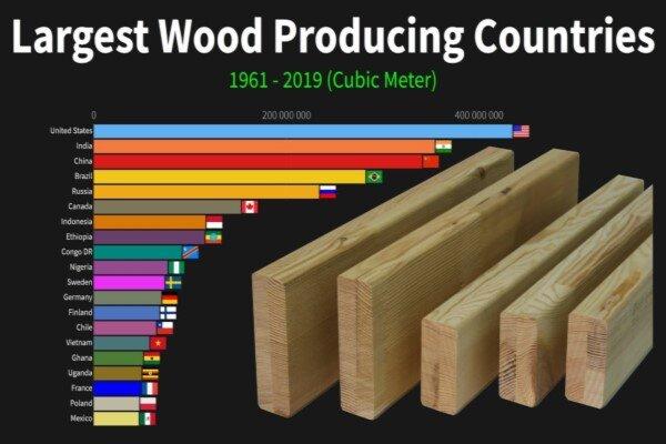 نیمی از تولید چوب جهان در دست ۵ کشور