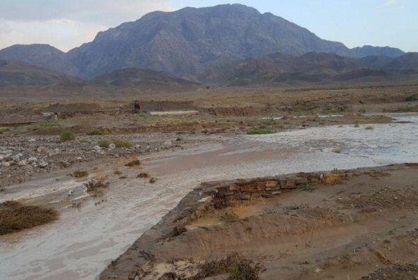 بارندگی به ۶۰ درصد جادههای عشایری ممسنی خسارت وارد کرد