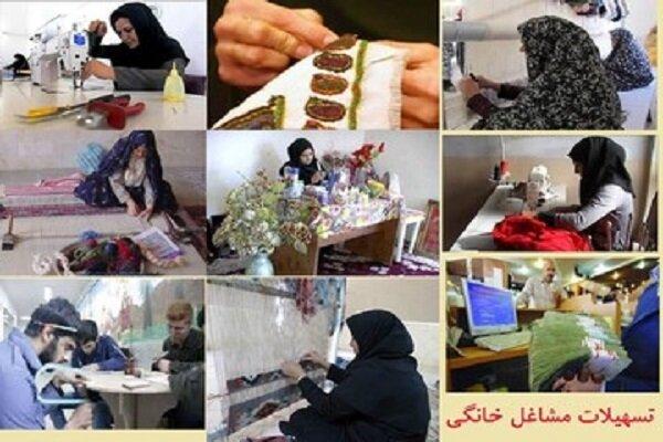 ۴۸ میلیارد تومان تسهیلات برای مشاغل خانگی در زنجان هزینه شد