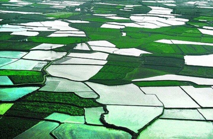 اجرای طرح کاداستر در ۲۰۰ هزار هکتار از اراضی ملی استان همدان