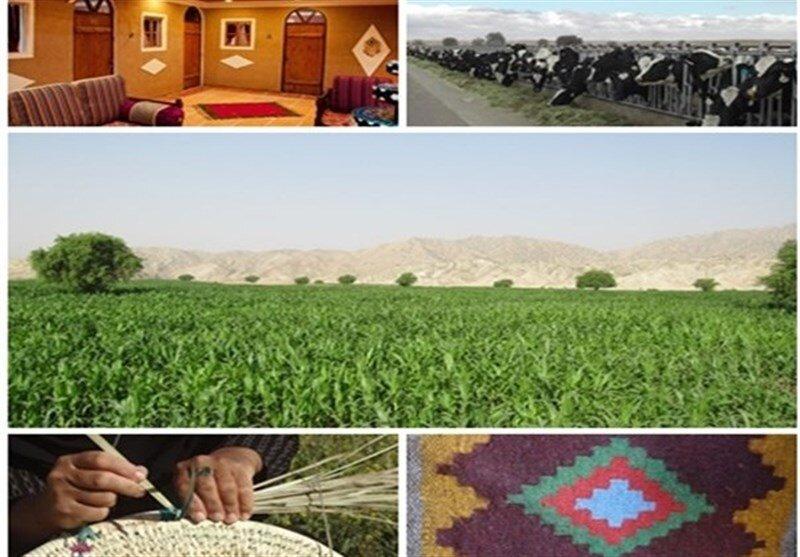 ۳۴۴۰ میلیارد ریال تسهیلات اشتغال روستایی در استان همدان توزیع شده است