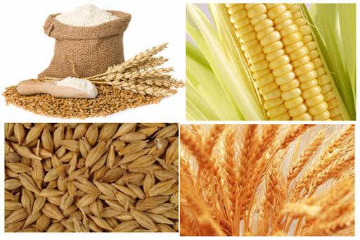 مشکلی برای تامین نهاده های کشاورزی در آذربایجان شرقی وجود ندارد
