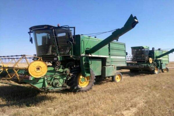 سالانه ۹ هزار و ۴۰۰ تن بذر گندم و جو در قزوین تولید میشود
