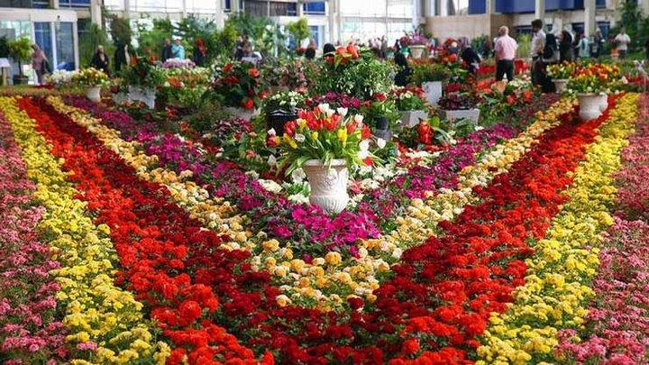 نمایشگاه بین المللی همدان با ارائه گل و گیاه آغاز به کار میکند