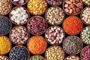 قیمت انواع حبوبات در ۲۱ اردیبهشت ۱۴۰۰