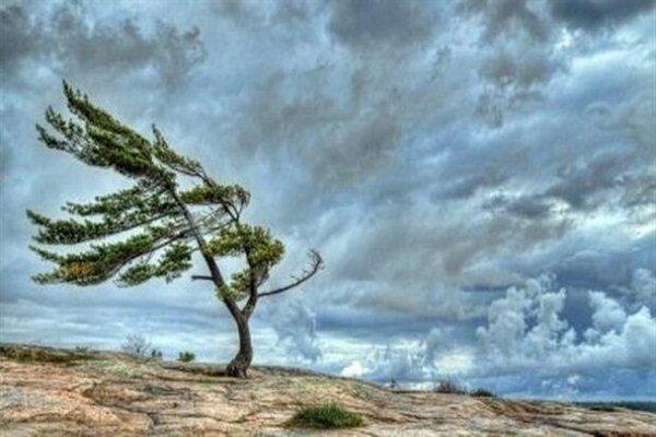 وزش باد شدید با ۷۰ کیلومتر سرعت در زنجان