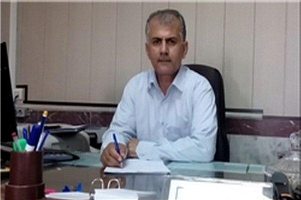 خرید ۴۲ هزار تن گندم در کردستان/ آهنگ رشد خرید تضمینی شدت گرفت
