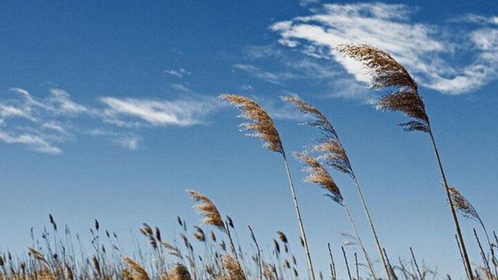 دمای هوای همدان افزایش می یابد / احتمال وزش باد شدید در روز طبیعت