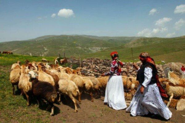 روستائیان در خط مقدم تولید قرار دارند