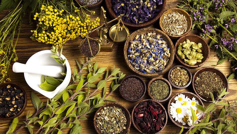 ظرفیت پنهان گیاهان دارویی اصفهان برای سرمایهگذاران/ زمینهای مستعد بلااستفاده مانده است