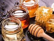 سالانه ۲۸۰۰ تن عسل در لرستان تولید میشود