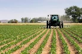 طراحی در کشت  تغییر می کند/ بکارگیری از تکنولوژی، تنها راه نجات صنعت کشاورزی دنیا