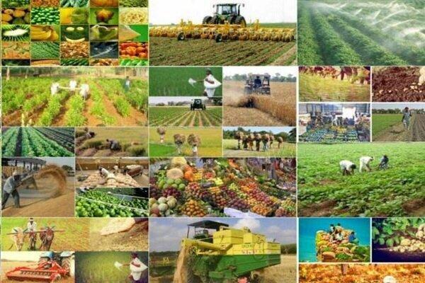 بهرهبرداری از ۵۸ پروژه کشاورزی خراسان شمالی/ ۷۱میلیارد تومان سرمایهگذاری شد