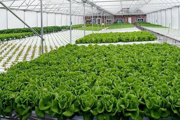 شهرکهای کشاورزی در چهارمحال و بختیاری توسعه مییابد/ مکانیابی ۱۸منطقه