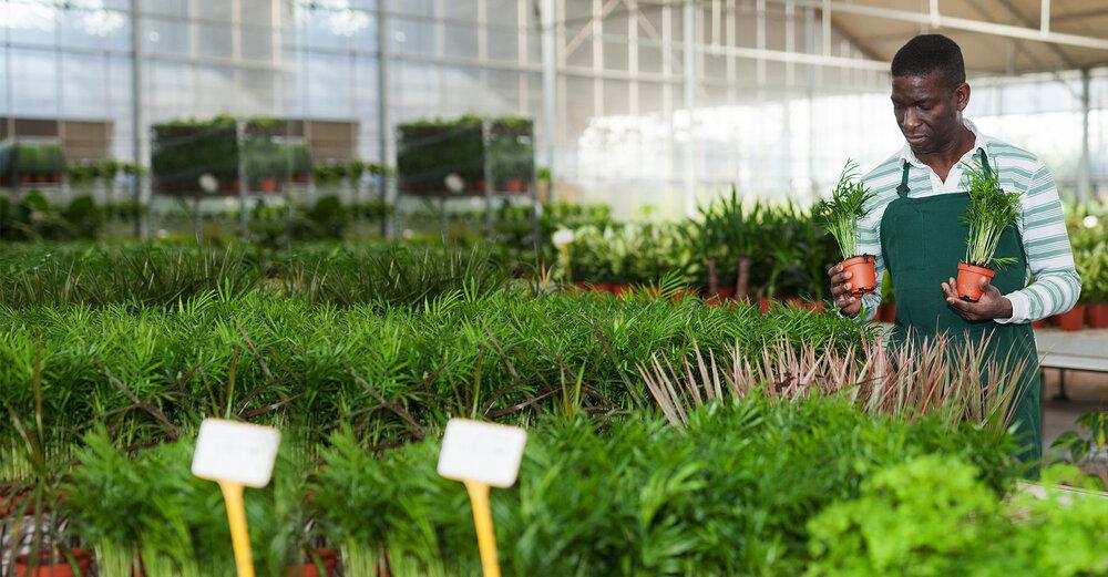 ۶۰ ایده برتر سودآور تجاری در صنعت کشاورزی جهان (بخش اول)