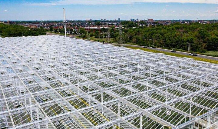 احداث بزرگ ترین پروژه کشت گلخانه ای شیشه ای مدرن خاورمیانه
