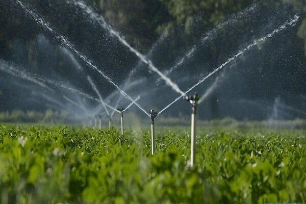 برنامه ریزی برای آبی کردن ۱۸۰ هزار هکتار از اراضی کشاورزی ایلام