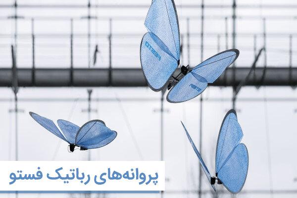 پروانههای فستو نمونهای عالی از علم زیست تقلید