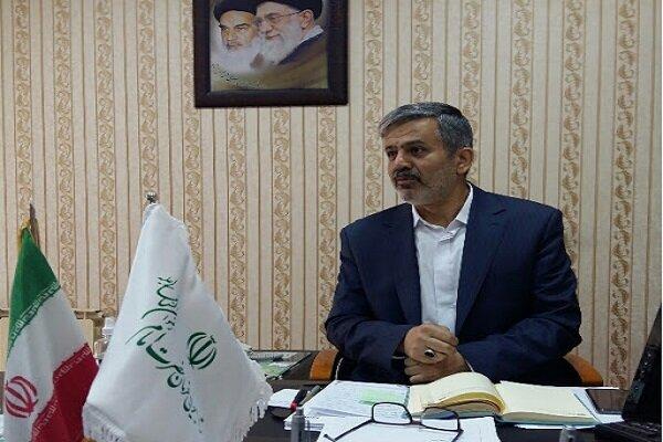 ۵۶۳ طرح اشتغالزایی توسط ستاد اجرایی فرمان امام در کرمان اجرا شد