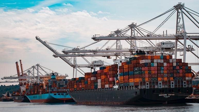 ورود مجلس به بررسی چرایی واردات کالاهای لوکس با ارز دولتی