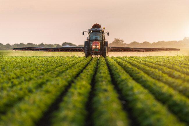 برگزاری بیش از ۷۸ میز کالایی در بخش کشاورزی و صنایع تبدیلی