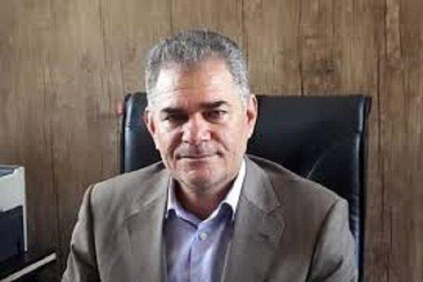 آفتی که کشاورزی کرمان را تهدید می کند