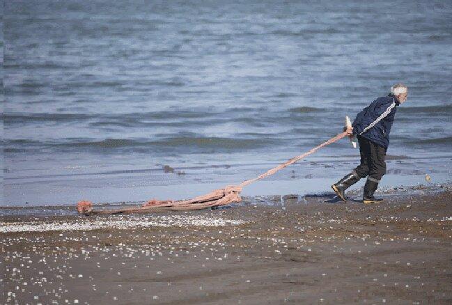 صید هزار و ۳۱۱ تن ماهی استخوانی از دریای خزر تا پایان آذر ماه