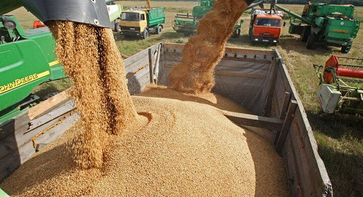 خرید بیش از یک میلیون و ۲۰۰ هزار تن گندم از کشاورزان خوزستانی
