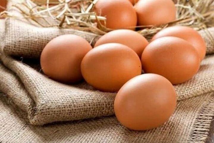 افزایش قیمت تخم مرغ با افزایش قیمت نهادههای دامی