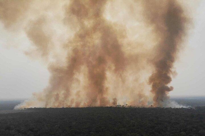 آتش سوزی آمازون 1