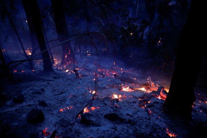 آتش سوزی آمازون 3