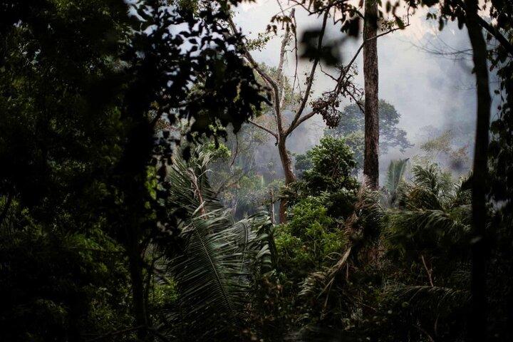 آتش سوزی آمازون 13