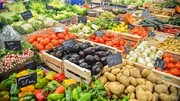 بهای جهانی مواد غذایی به بالاترین رقم در ۷ سال گذشته رسید