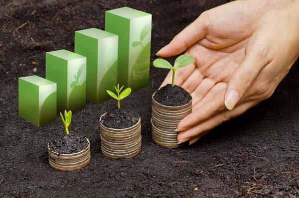 درخواست تخصیص مابقی تسهیلات اجرای سیاستهای تنظیم بازار