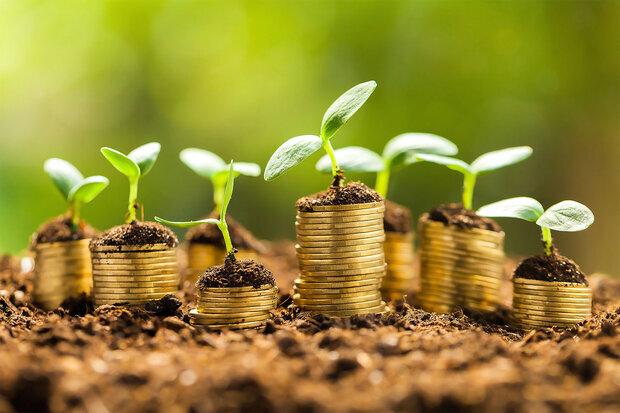 اقتصاد کشاورزی از حرف تا عمل
