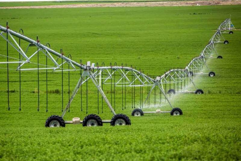 تولید سالانه ۸۰۰ هزار تن محصول در دهلران/ مشکلی در تامین بذر کشاورزان نیست