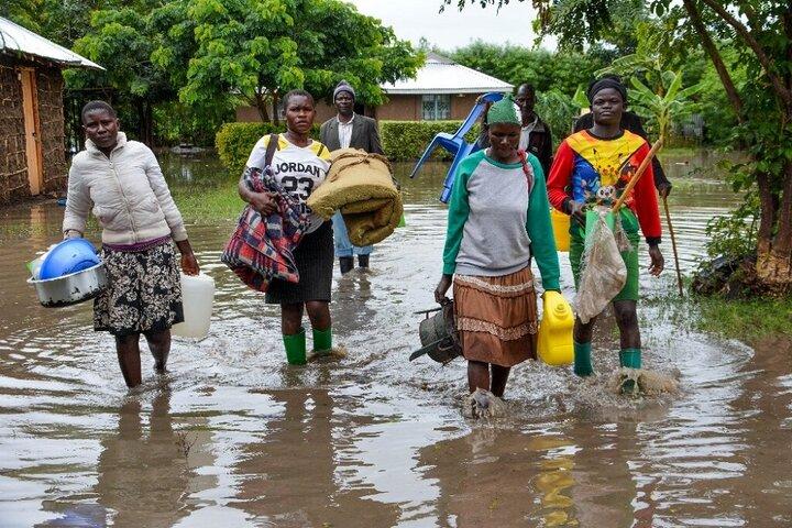 سیل در آفریقا 3
