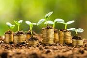 فعالیت صندوق های کشاورزی فارس با ۸۵۰ میلیارد ریال سرمایه