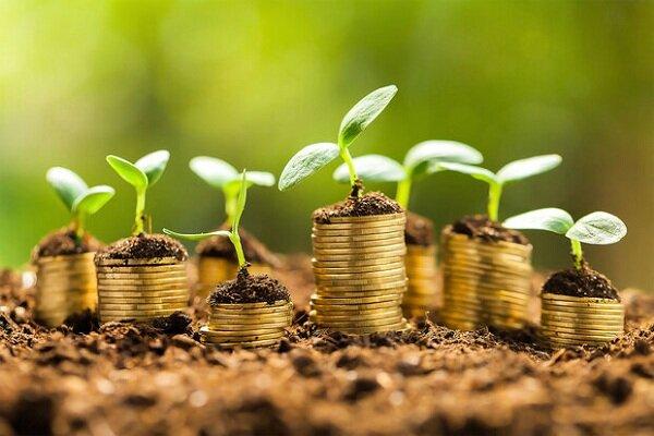 ۴ شرکت استارت آپی در بخش کشاورزی آذربایجانشرقی فعال است