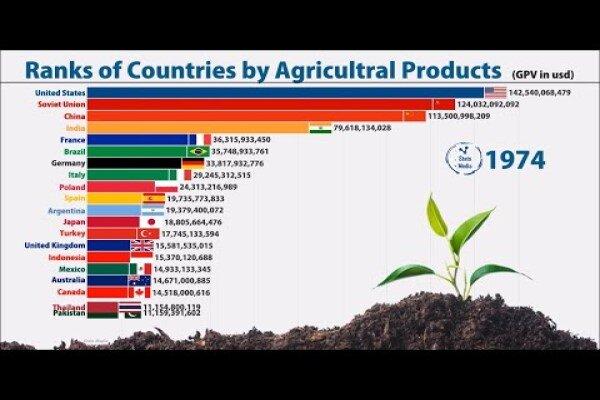 چین، بیرقیب در کشاورزی