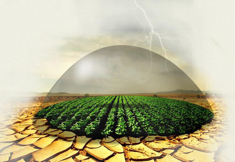اختصاص اعتبار ۳ هزار میلیاردی برای تقویت صندوق بیمه محصولات کشاورزی