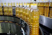 روزانه ۵۰ تن روغن در گیلان عرضه می شود